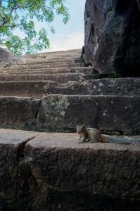 Anuradhapura-15